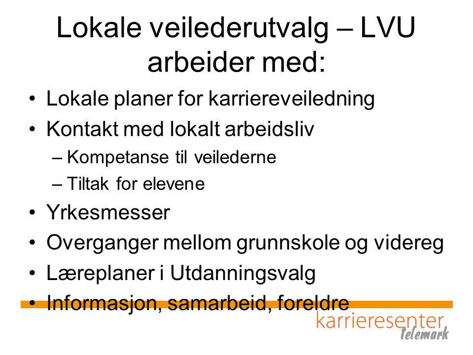 Lokale veilederutvalg – LVU arbeider med: