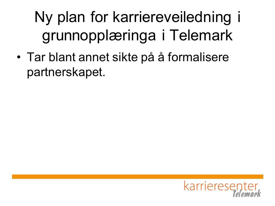Ny plan for karriereveiledning i grunnopplæringa i Telemark