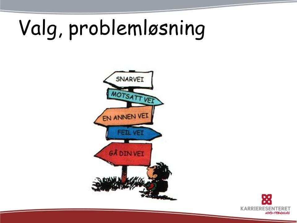Valg, problemløsning