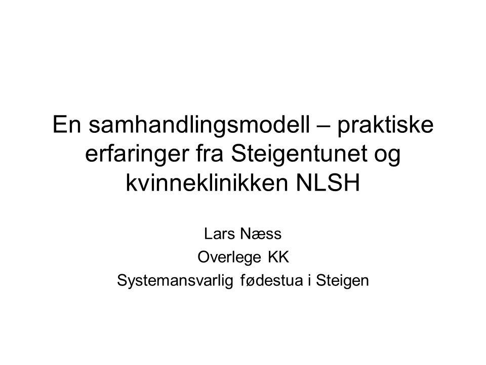 Lars Næss Overlege KK Systemansvarlig fødestua i Steigen