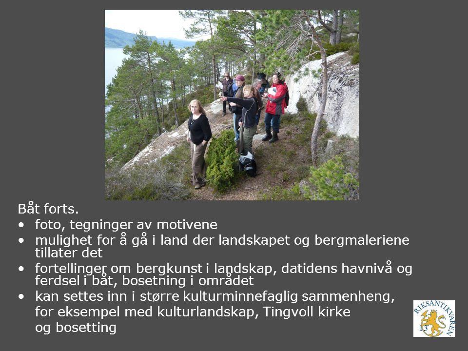 Båt forts. foto, tegninger av motivene. mulighet for å gå i land der landskapet og bergmaleriene tillater det.