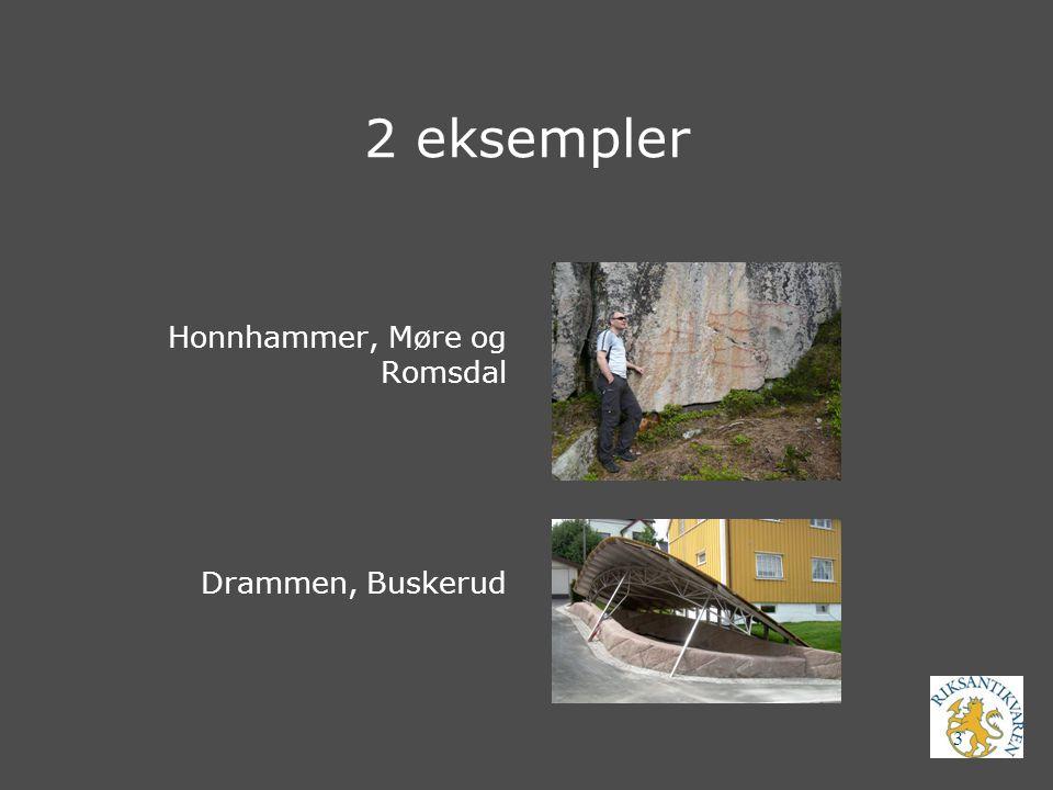 04.04.2017 2 eksempler Honnhammer, Møre og Romsdal Drammen, Buskerud