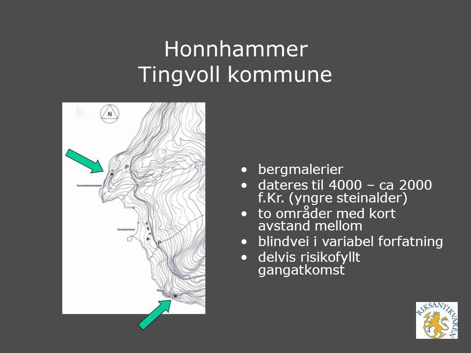 Honnhammer Tingvoll kommune