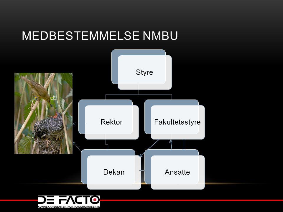Medbestemmelse NMBU Styre Rektor Dekan Fakultetsstyre Ansatte