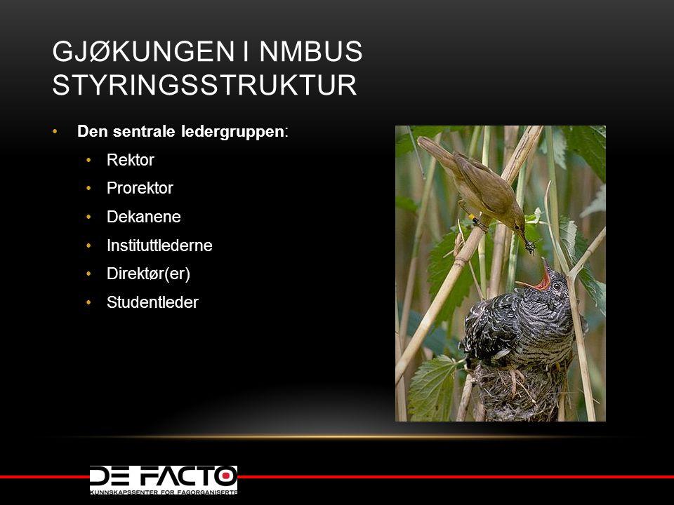 Gjøkungen I NMBUs styringsstruktur