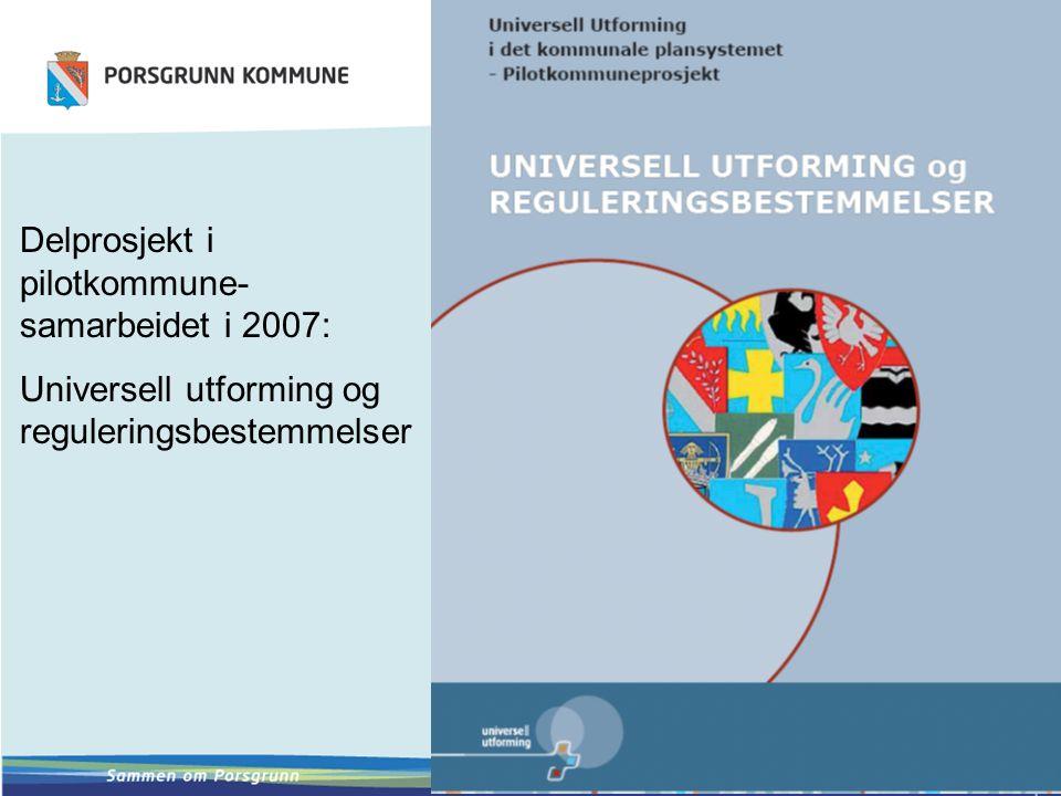Delprosjekt i pilotkommune-samarbeidet i 2007: