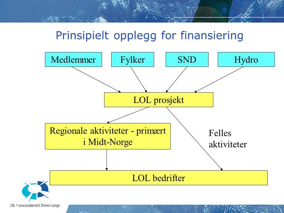 Prinsipielt opplegg for finansiering
