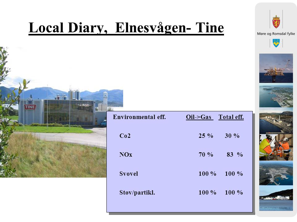 Local Diary, Elnesvågen- Tine