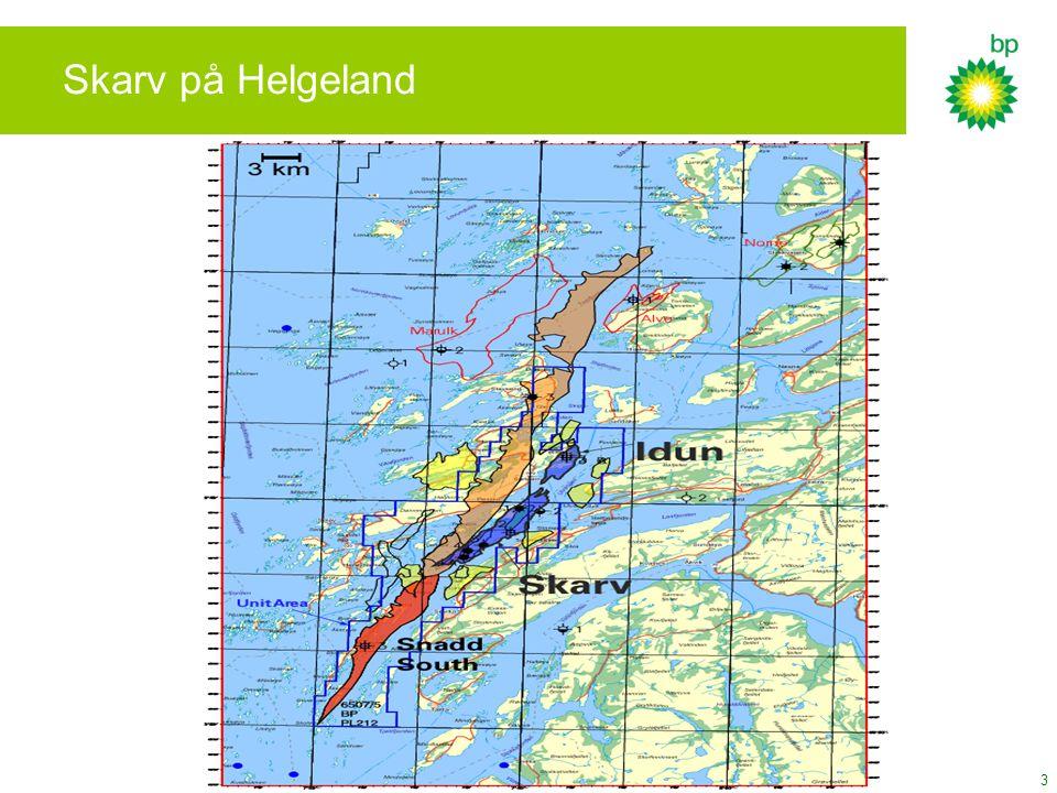 Skarv på Helgeland