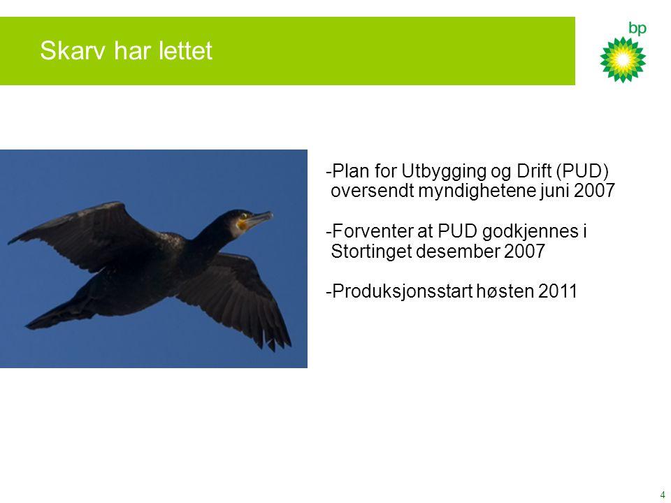 Skarv har lettet Plan for Utbygging og Drift (PUD)