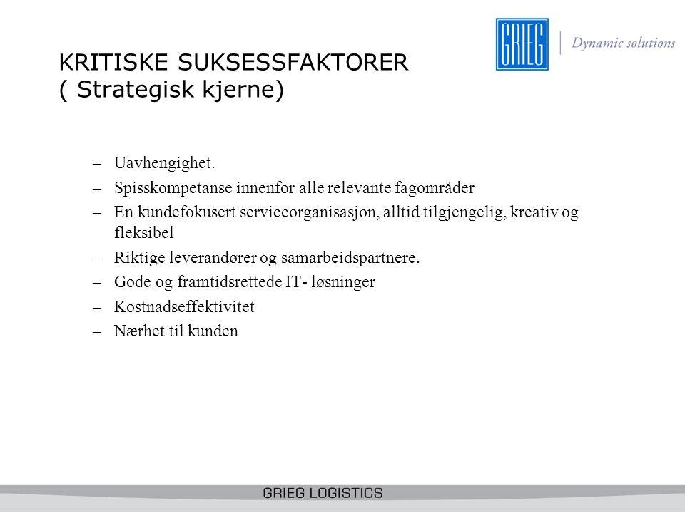 KRITISKE SUKSESSFAKTORER ( Strategisk kjerne)