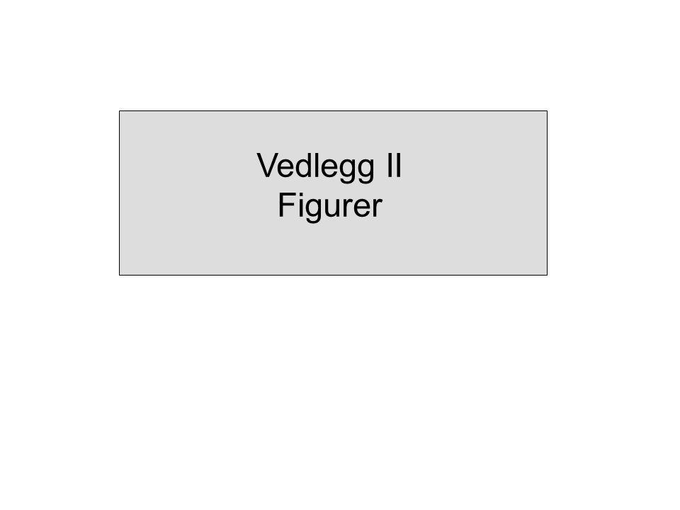Vedlegg II Figurer