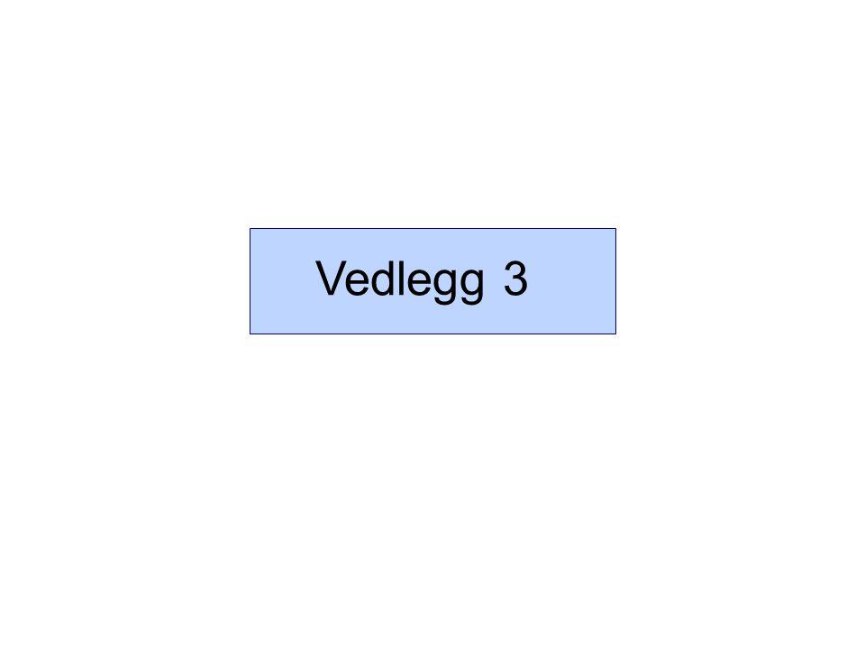 Vedlegg 3