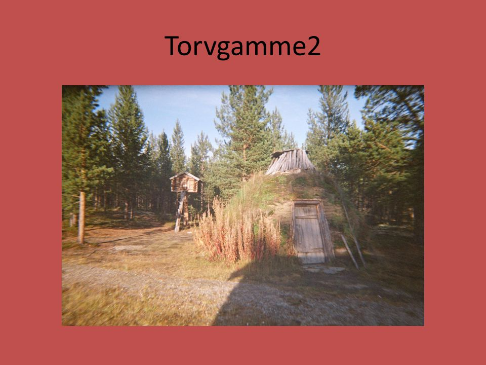 Torvgamme2