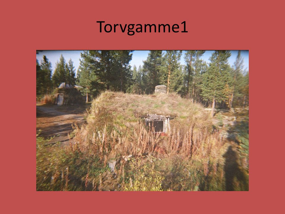 Torvgamme1