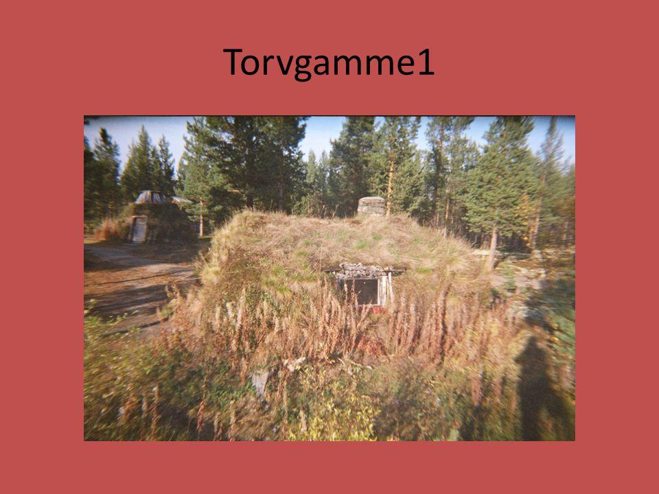 Torvgamme1