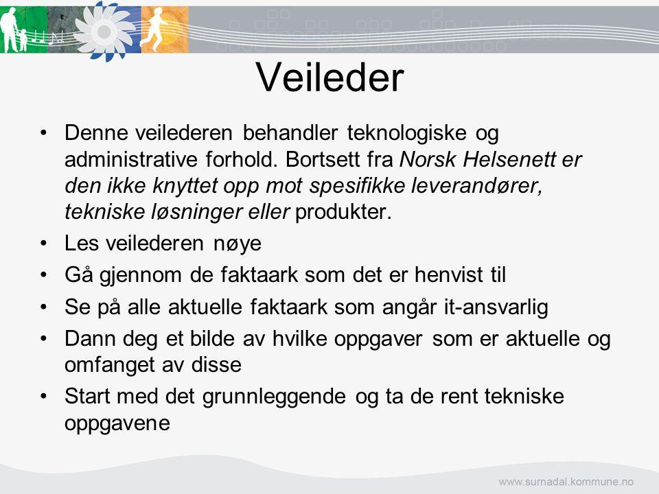 Veileder