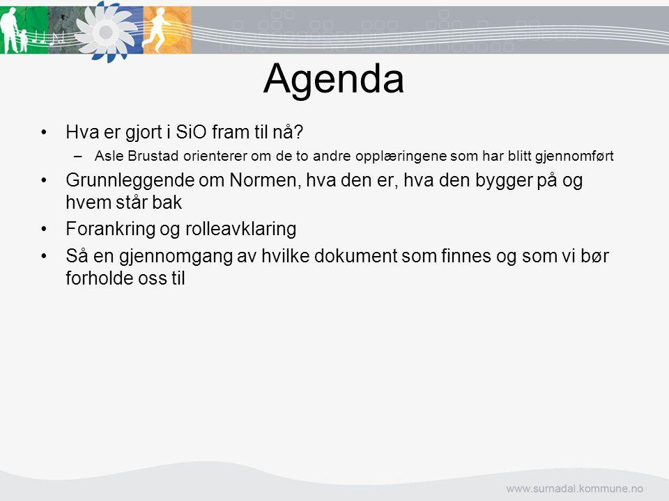 Agenda Hva er gjort i SiO fram til nå