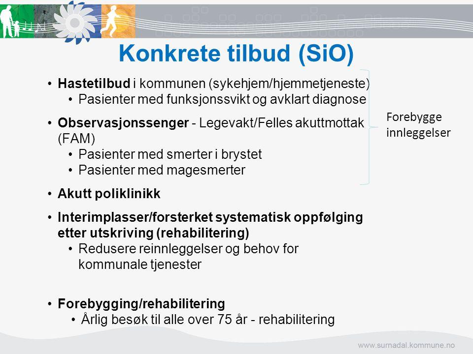 Konkrete tilbud (SiO) Hastetilbud i kommunen (sykehjem/hjemmetjeneste)