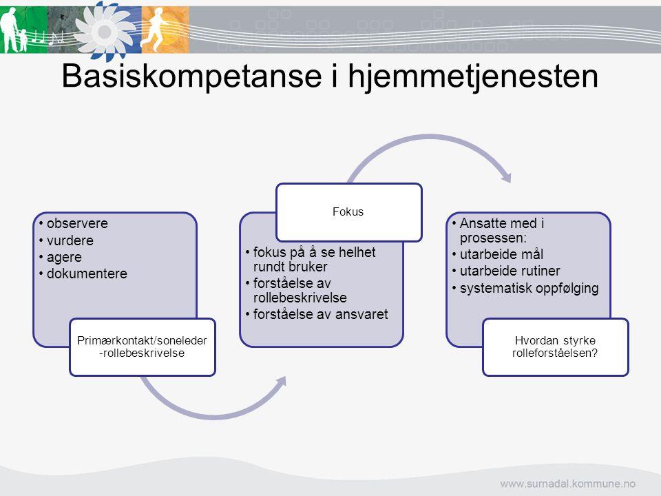 Basiskompetanse i hjemmetjenesten
