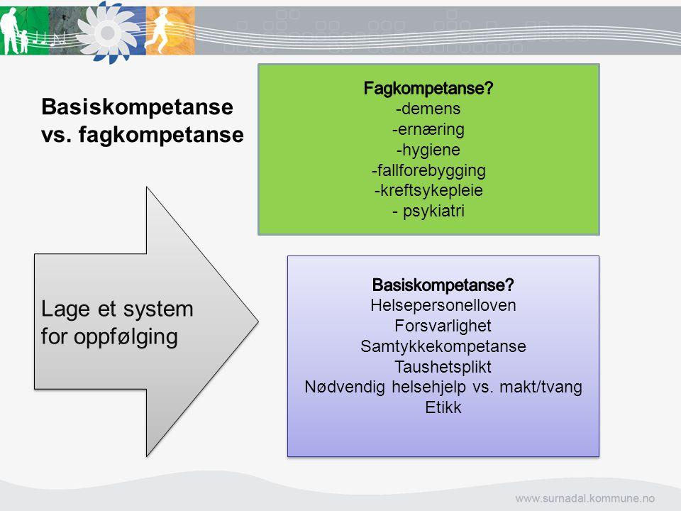Basiskompetanse vs. fagkompetanse