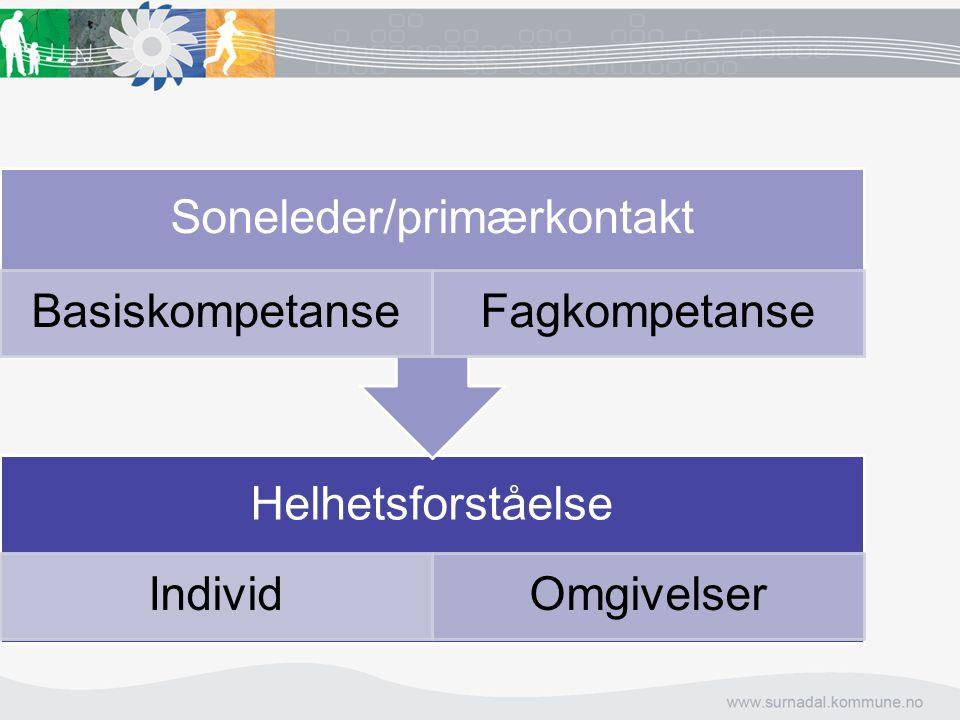 Soneleder/primærkontakt