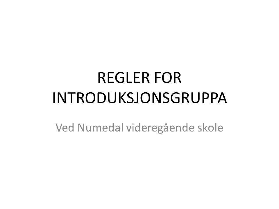 REGLER FOR INTRODUKSJONSGRUPPA