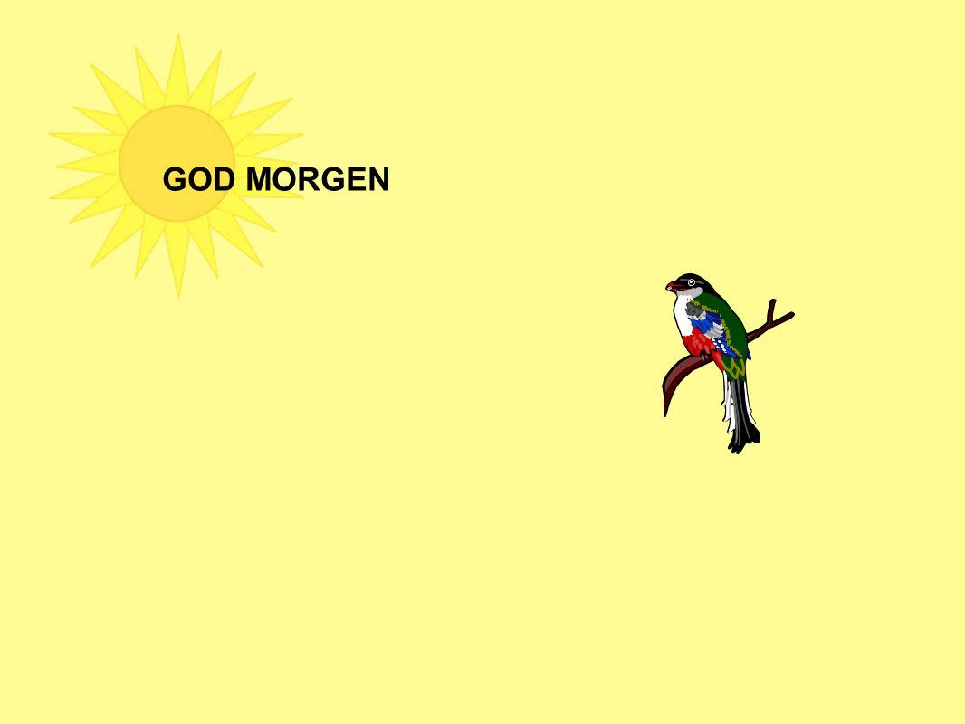 GOD MORGEN