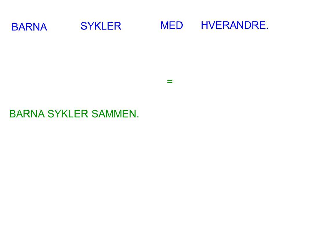 BARNA SYKLER MED HVERANDRE. = BARNA SYKLER SAMMEN.