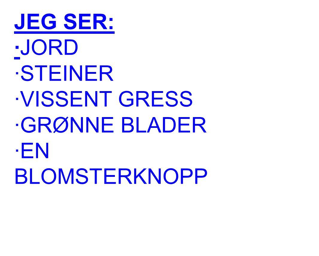 JEG SER: ·JORD ·STEINER ·VISSENT GRESS ·GRØNNE BLADER ·EN BLOMSTERKNOPP