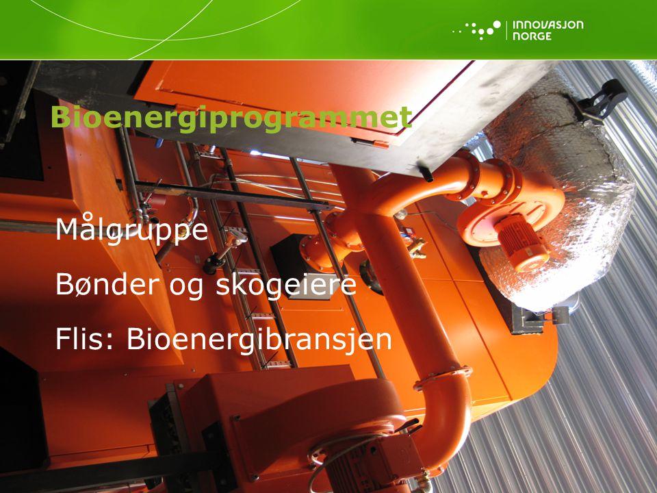 Flis: Bioenergibransjen