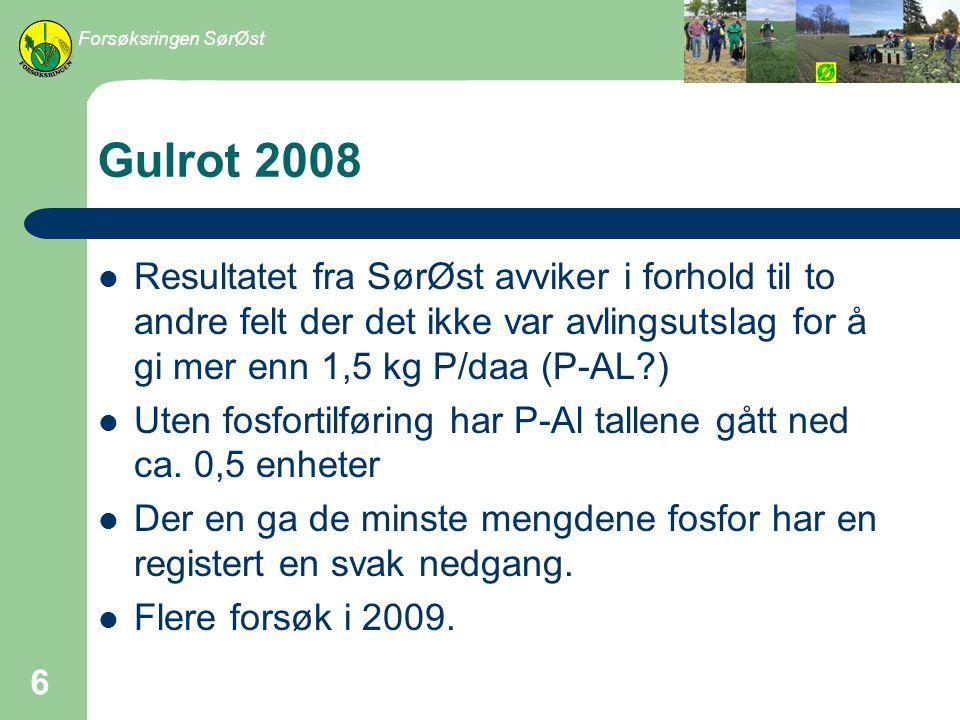 Forsøksringen SørØst Gulrot 2008.