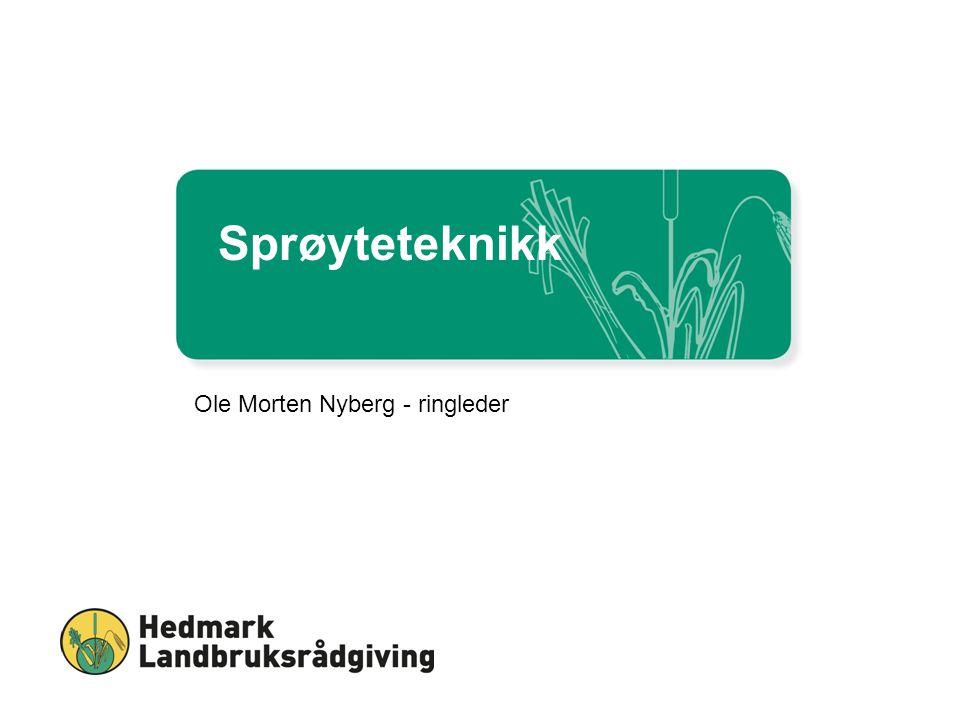 Sprøyteteknikk Ole Morten Nyberg - ringleder