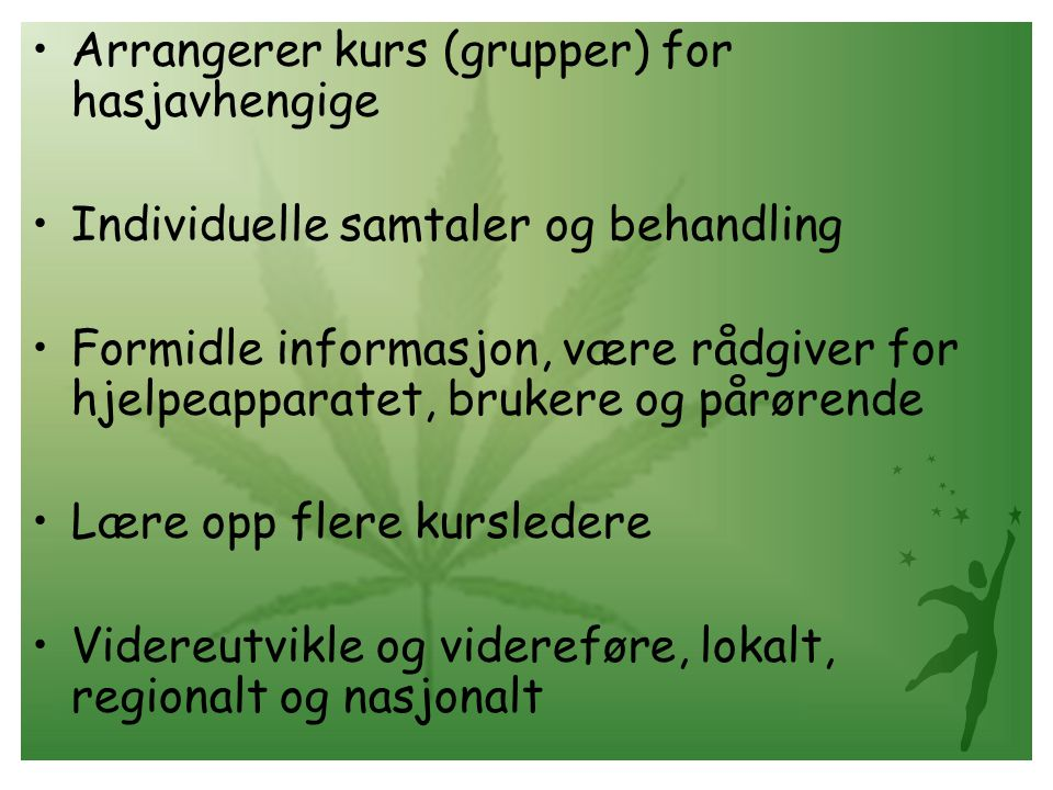 Arrangerer kurs (grupper) for hasjavhengige