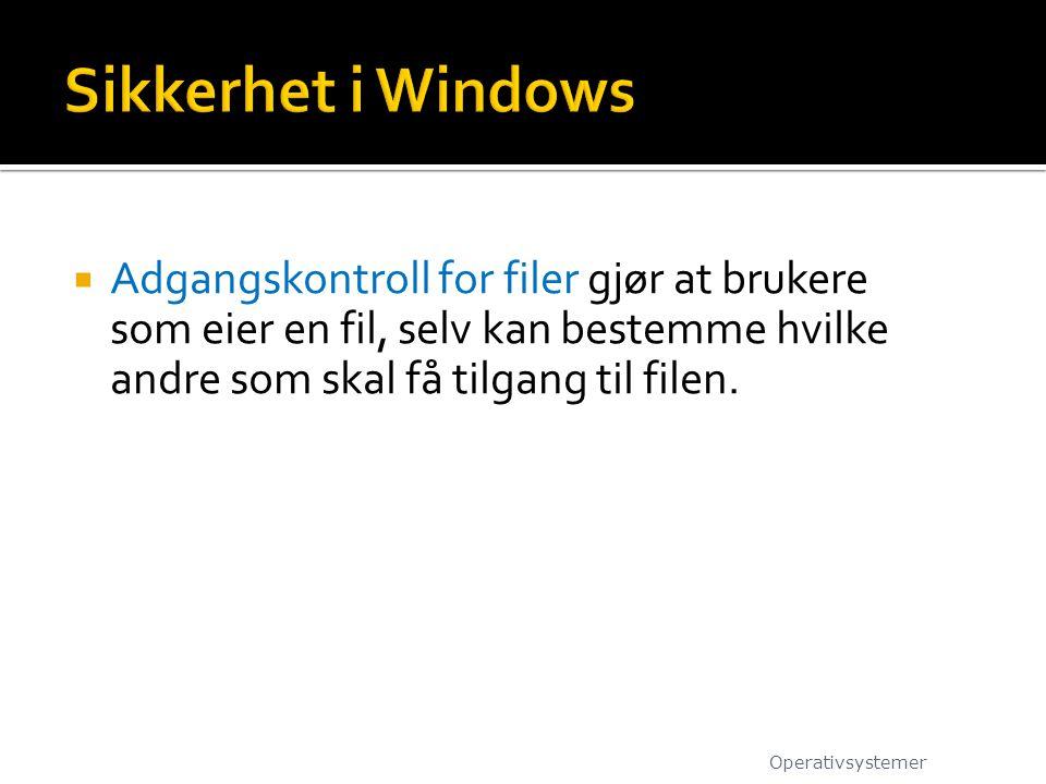 Sikkerhet i Windows Adgangskontroll for filer gjør at brukere som eier en fil, selv kan bestemme hvilke andre som skal få tilgang til filen.