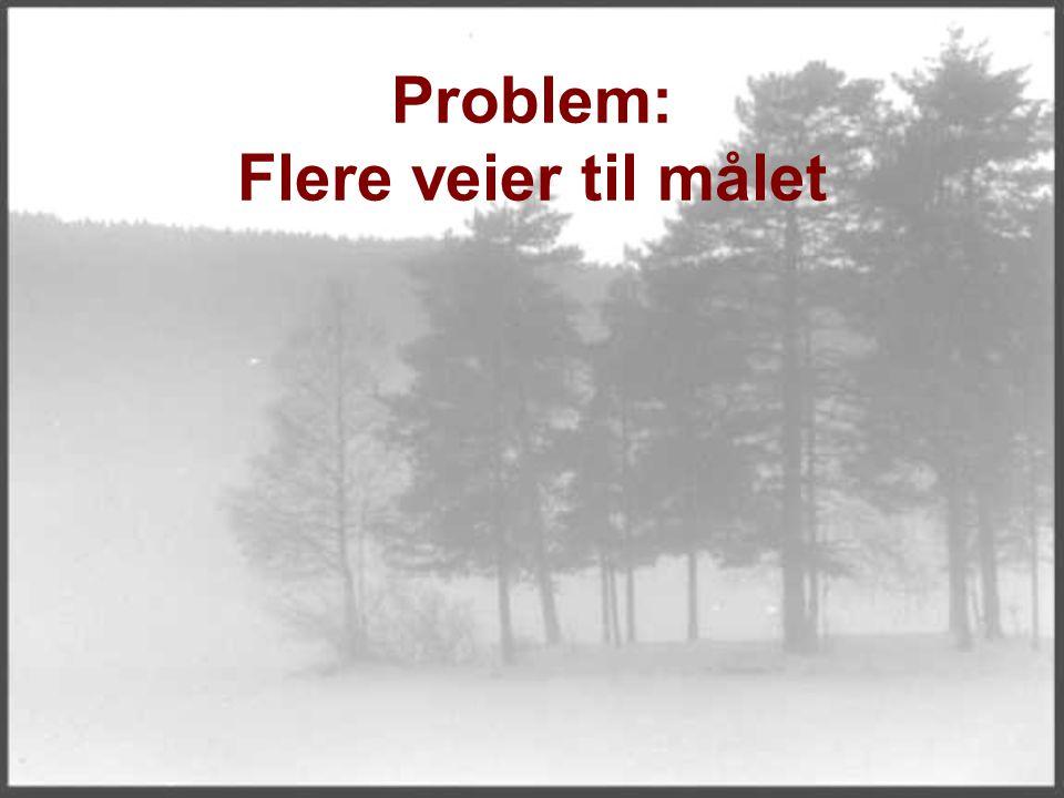 Problem: Flere veier til målet