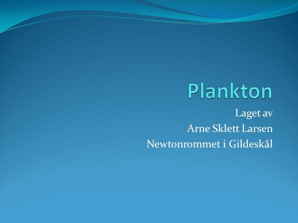 Laget av Arne Sklett Larsen Newtonrommet i Gildeskål
