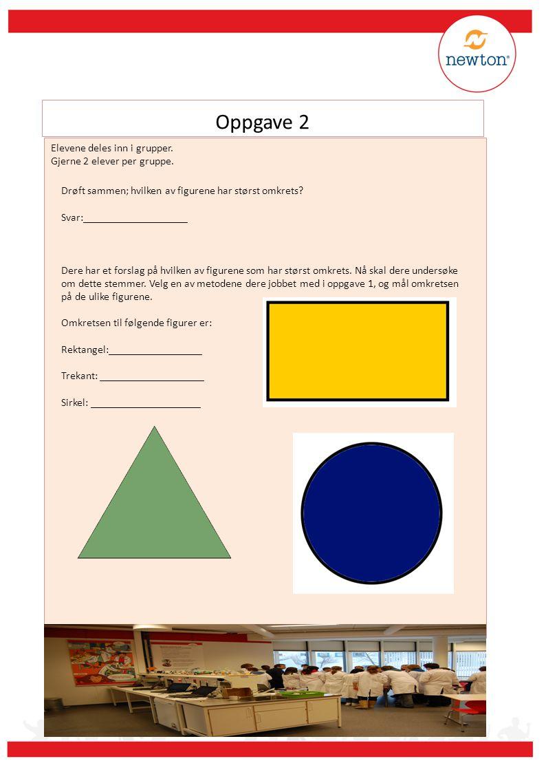 Oppgave 2 Elevene deles inn i grupper. Gjerne 2 elever per gruppe.