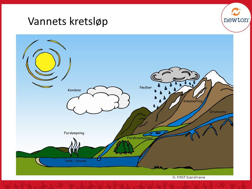 Vannets kretsløp Ill. FIRST Scandinavia