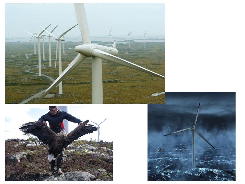 Positive argumenter: «fornybar energi, ingen forurensning, Norge har mye tilgjengelig vindkraft»