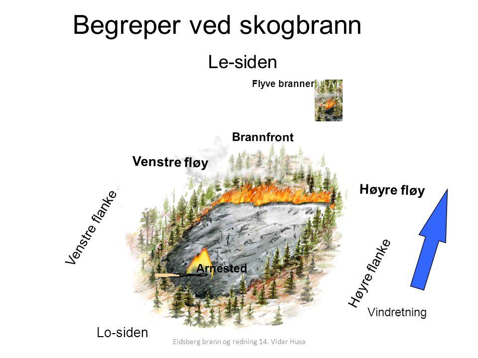 Begreper ved skogbrann