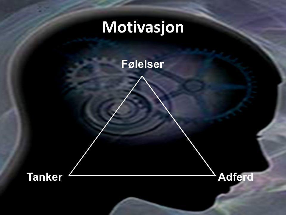 Motivasjon Følelser Tanker Adferd