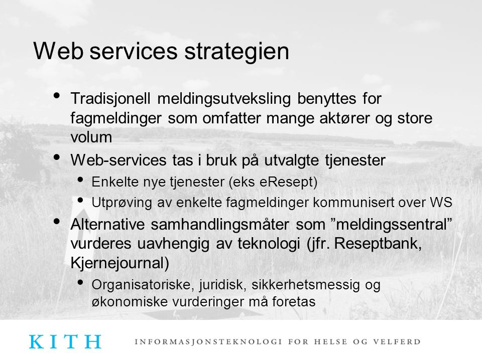 Web services strategien