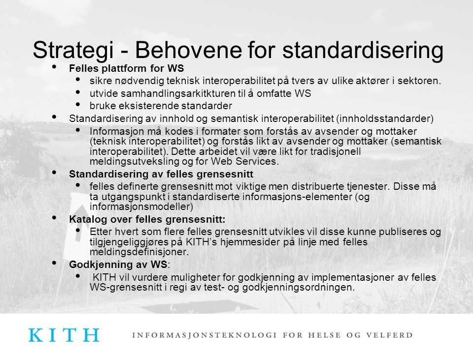 Strategi - Behovene for standardisering