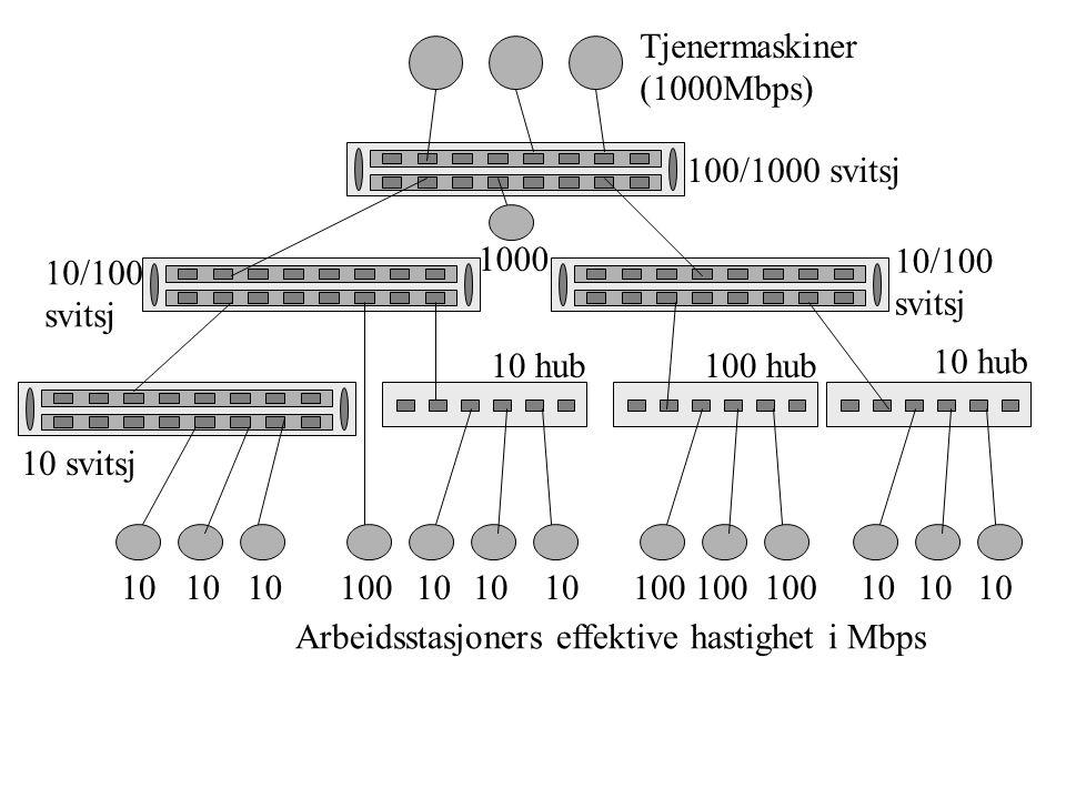Tjenermaskiner (1000Mbps) 100/1000 svitsj. 1000. 10/100. svitsj. 10/100. svitsj. 10 hub. 100 hub.