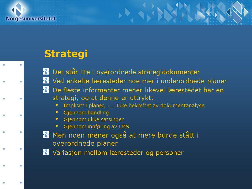 Strategi Men noen mener også at mere burde stått i overordnede planer