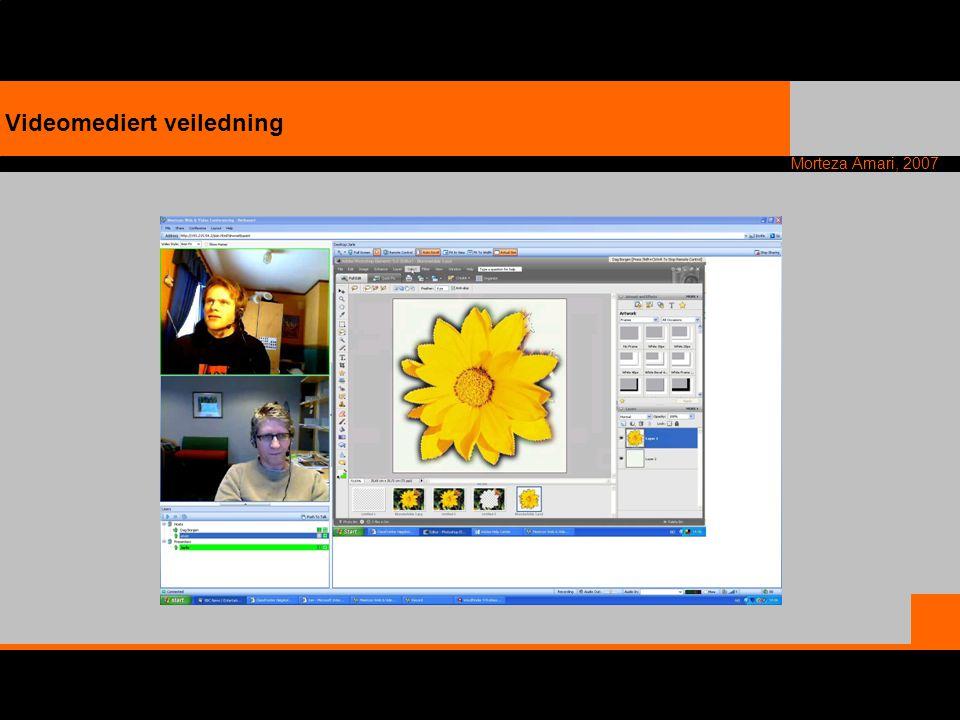 Videomediert veiledning