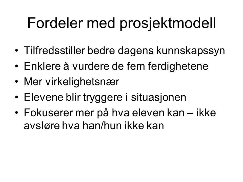 Fordeler med prosjektmodell