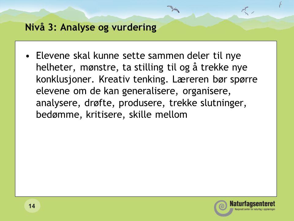 Nivå 3: Analyse og vurdering