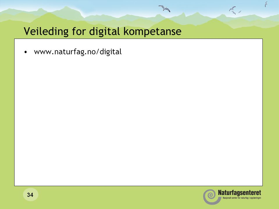 Veileding for digital kompetanse